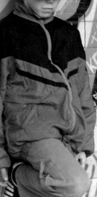 La piccola vedetta lombarda (2011)